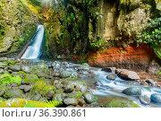 Sao Miguel, Islas Azores, Portugal. Стоковое фото, фотограф Zoonar.com/Martin Silva Cosentino / easy Fotostock / Фотобанк Лори