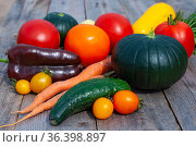 Fresh vegetables. Growing tomatoes, cucumbers, peppers and zucchini. Стоковое фото, фотограф Мастепанов Павел / Фотобанк Лори