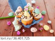 Kleine Cupcake mit Ostereiern in Karton zu Ostern. Стоковое фото, фотограф Zoonar.com/Barbara Neveu / easy Fotostock / Фотобанк Лори