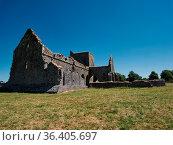 Die Wiese vor der Hore Abbey in Irland bei Cashel an einem sonnigen... Стоковое фото, фотограф Zoonar.com/Christian Länger / easy Fotostock / Фотобанк Лори