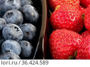 Fresh ripe sweet blueberries and strawberries. Стоковое фото, фотограф Владимир Белобаба / Фотобанк Лори