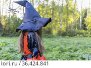 Cute girl in orange carnival costume of witch for Halloween holiday is standing among trees in garden with box for collecting sweets. Trick-or-treating. Guising. Jack-o-lantern. witch's hat spider. Стоковое фото, фотограф Ирина Ткачук / Фотобанк Лори