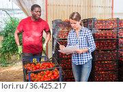 Female farmer working with papers in greenhouse vegetable store. Стоковое фото, фотограф Яков Филимонов / Фотобанк Лори