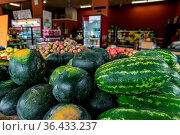Close up shot of with fresh, oval or long shaped watermelons with... Стоковое фото, фотограф Zoonar.com/VALMEDIA / easy Fotostock / Фотобанк Лори