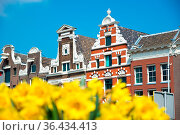 Dutch houses with yellow tulip flowers, Amsterdam, Netherlands. Стоковое фото, фотограф Zoonar.com/Yuri Dmitrienko / easy Fotostock / Фотобанк Лори