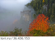Ruine der Burg Tschanüff, Ramosch, Engadin, Graubünden, Schweiz /... Стоковое фото, фотограф Zoonar.com/Pant / easy Fotostock / Фотобанк Лори