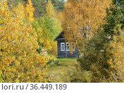 Деревня Гушкала. Республика Карелия (2020 год). Стоковое фото, фотограф Дмитрий Шишков / Фотобанк Лори