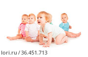 Group of cute babies crawling on floor. Isolated on white background. Стоковое фото, фотограф Zoonar.com/Oksana Shufrych / easy Fotostock / Фотобанк Лори