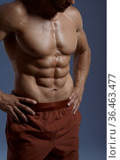 Muscular male athlete, photo shoot in studio. Стоковое фото, фотограф Tryapitsyn Sergiy / Фотобанк Лори