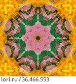 Circular star shape made from colorful feathers. Geometric kaleidoscope... Стоковое фото, фотограф Zoonar.com/Jason C. Finn / easy Fotostock / Фотобанк Лори