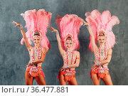 Three Women in samba or lambada costume with pink feathers plumage. Стоковое фото, фотограф Zoonar.com/Max / easy Fotostock / Фотобанк Лори