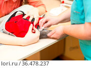 Veterinarian takes blood test from cat in veterinary clinic. Стоковое фото, фотограф Zoonar.com/Max / easy Fotostock / Фотобанк Лори