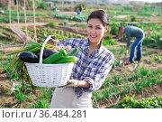 Cheerful asian woman with vegetable harvest in backyard garden. Стоковое фото, фотограф Яков Филимонов / Фотобанк Лори