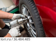 Repair or changing tire car vehicle mechanic screwing car wheel at... Стоковое фото, фотограф Zoonar.com/Max / easy Fotostock / Фотобанк Лори