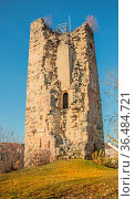 Hinterburg Tengen, Landkreis Konstanz. Стоковое фото, фотограф Zoonar.com/Falke / easy Fotostock / Фотобанк Лори