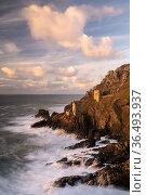 The Crown's Engine Houses at Botallack, high tide at sunset, West Cornwall, UK. November 2020. Стоковое фото, фотограф Ross Hoddinott / Nature Picture Library / Фотобанк Лори