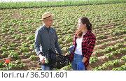 Young farm workwoman talking to male coworker on farm field on sunny spring day. Стоковое видео, видеограф Яков Филимонов / Фотобанк Лори