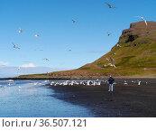 ESY-059737133. Стоковое фото, фотограф Zoonar.com/Dagmar Richardt / easy Fotostock / Фотобанк Лори