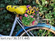 Fahrrad , Blumenschmuck, sattel, gepäckträger, gelb, blau, bunt, frühling... Стоковое фото, фотограф Zoonar.com/Volker Rauch / easy Fotostock / Фотобанк Лори