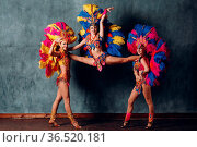 Three Woman in brazilian samba carnival costume with colorful feathers... Стоковое фото, фотограф Zoonar.com/Max / easy Fotostock / Фотобанк Лори
