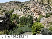 Martin River, Los Estrechos. Parque Cultural del Rio Martin, Albalate... Стоковое фото, фотограф J M Barres / age Fotostock / Фотобанк Лори