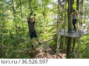 A young man works hard to cross a challenging treetop rope course... Стоковое фото, фотограф Lori Epstein / age Fotostock / Фотобанк Лори