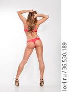 Rückenansicht einer jungen Frau in erotischen Dessous. Стоковое фото, фотограф Zoonar.com/Hans Eder / easy Fotostock / Фотобанк Лори
