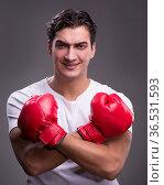 Handsome boxer in boxing concept. Стоковое фото, фотограф Elnur / Фотобанк Лори