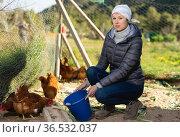 Woman farmer feeding bird in the backyard of a village house. Стоковое фото, фотограф Яков Филимонов / Фотобанк Лори