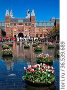 Tulpen-Dekorationen spiegeln sich im Brunnen vor dem Rijksmuseum ... Стоковое фото, фотограф Zoonar.com/Dirk Rueter / age Fotostock / Фотобанк Лори