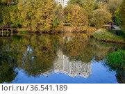 Москва, Зябликово, осень в парке в пойме репки Городня (2020 год). Стоковое фото, фотограф glokaya_kuzdra / Фотобанк Лори