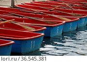 Blau-rote Ruderboote an einem Steg. Стоковое фото, фотограф Zoonar.com/Martina Berg / easy Fotostock / Фотобанк Лори