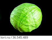 Green cabbage isolated on black background. Close-up view. Стоковое фото, фотограф Zoonar.com/Laurent Davoust / easy Fotostock / Фотобанк Лори