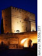 Torre de la Calahorra medieval tower, Cordoba city, Andalusia,Spain. Стоковое фото, фотограф Frederic Soreau / age Fotostock / Фотобанк Лори