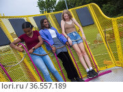 A happy, diverse group of teenage girls have fun on rides at the ... Стоковое фото, фотограф Lori Epstein / age Fotostock / Фотобанк Лори