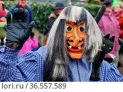 Windige-Eckhexe Wittnau e.V. beim Fasnetumzug Hartheim 2016. Стоковое фото, фотограф Zoonar.com/Joachim Hahne / age Fotostock / Фотобанк Лори