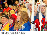Gut gelaunte Freiburger Fans freuen sich über Sieg gg. Kassel Huskies... Стоковое фото, фотограф Zoonar.com/Joachim Hahne / age Fotostock / Фотобанк Лори