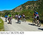 Radfahrer auf dem Radweg Grüner Weg Vía Verde de la Sierra zwischen... Стоковое фото, фотограф Zoonar.com/Pant / age Fotostock / Фотобанк Лори