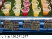 Puesto de venta de jugos de fruta frescos en el Borough Market, Southwark... Стоковое фото, фотограф Eduardo Dreizzen / age Fotostock / Фотобанк Лори
