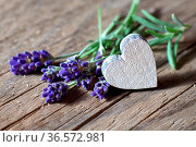 Lavendelblüten und ein Holzherz. Стоковое фото, фотограф Zoonar.com/Petra Schüller / easy Fotostock / Фотобанк Лори