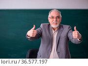 Old teacher in front of blackboard. Стоковое фото, фотограф Zoonar.com/Elnur Amikishiyev / easy Fotostock / Фотобанк Лори