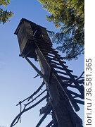 Verfallener Jägerstand auf einem bayrischen Gipfel im Gegenlicht. Стоковое фото, фотограф Zoonar.com/Eder Christa / age Fotostock / Фотобанк Лори