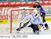 Hielt den Sieg für sein Team fest: Torwart Calvin Heeter von den ... Стоковое фото, фотограф Zoonar.com/Joachim Hahne / age Fotostock / Фотобанк Лори