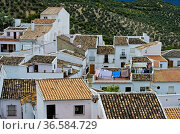 Blick auf die Dächer Zahara de la Sierra, Pueblo Blanco oder Weisses... Стоковое фото, фотограф Zoonar.com/Georg / age Fotostock / Фотобанк Лори