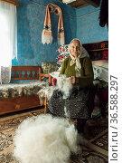 ZON-9182569. Стоковое фото, фотограф Zoonar.com/Sergio Delle Vedove / age Fotostock / Фотобанк Лори