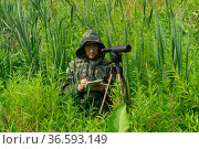 Ornithologist records the results of the observations while standing among the tall grass in the wetland. Стоковое фото, фотограф Евгений Харитонов / Фотобанк Лори