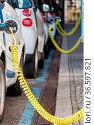 Elektroautos werden mit Energie versorgt. Стоковое фото, фотограф Zoonar.com/Karl Heinz Spremberg / age Fotostock / Фотобанк Лори