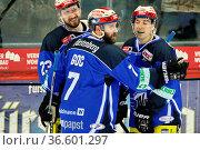 Glückliche Wild Wings: v.li. Matt Pelech (Schwenningen) erzielte ... Стоковое фото, фотограф Zoonar.com/Joachim Hahne / age Fotostock / Фотобанк Лори