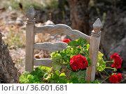 Tisch, Stuhl, möbel, malerisch, pittoresk, blume, blumen, blumenschmuck... Стоковое фото, фотограф Zoonar.com/Volker Rauch / easy Fotostock / Фотобанк Лори