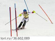 Benjamin Raich, Österreich, FIS Ski Weltcup Slalom der Herren, Kandahar... Стоковое фото, фотограф Zoonar.com/Günter Lenz / age Fotostock / Фотобанк Лори